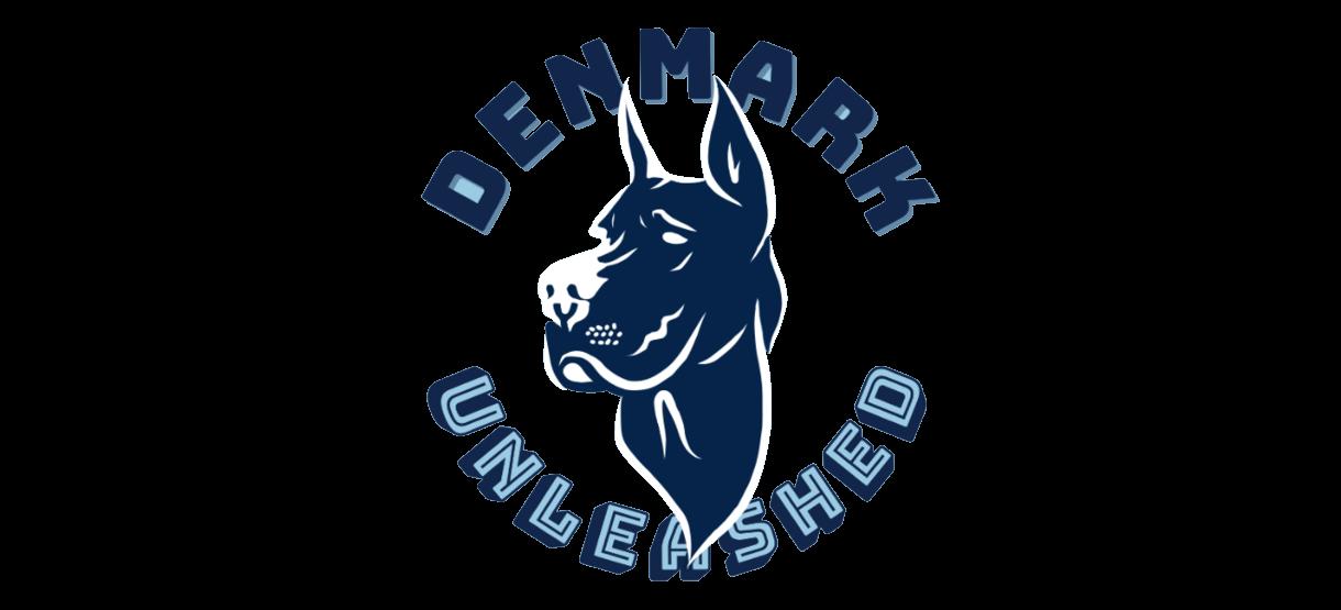The Student News Site of Denmark High School
